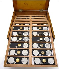 A collection of 132 Mycology Microscope Slides