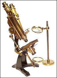 J. & W. Grunow, New York #499. Binocular microscope with Varley Stage