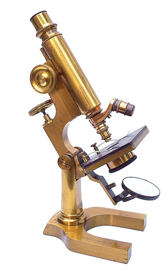 Schrauer, Maker, New York. Continental style monocular microscope