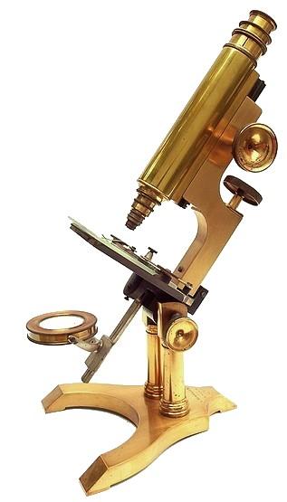 L. Schrauer, Maker, 42 Nassau St., New York . Microscope on a double pillar