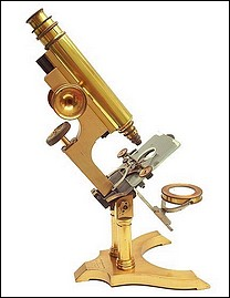 L. Schrauer, Maker, 42 Nassau St., New York. Microscope on a double pillar. c.1880