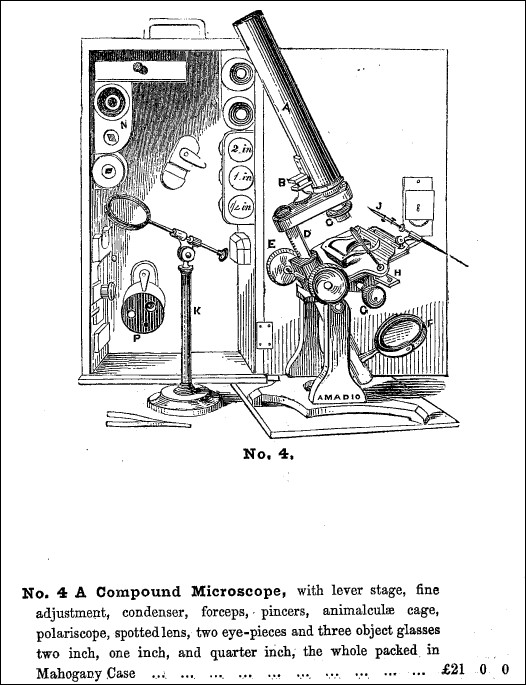 microscope from the J. Amadio 1957 catalog