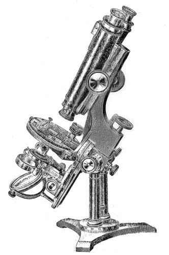 Bulloch No. 1 Professional Binocular Microscope