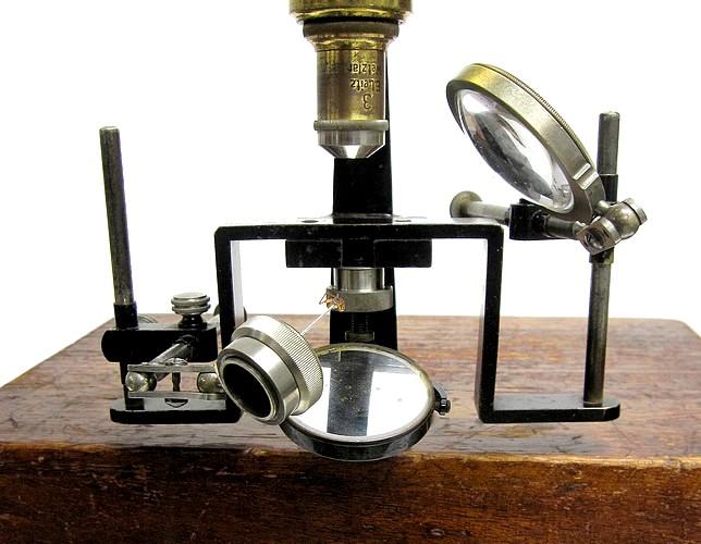 Leitz entomologica microscope