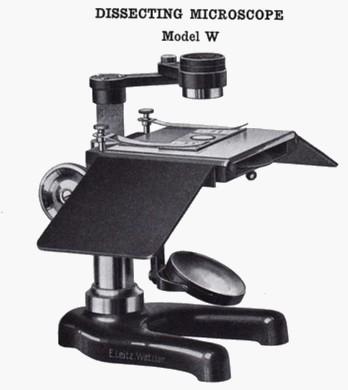 Leitz preparation microscope Model W