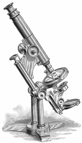 Bausch & Lomb Optical Co.  The Professional model microscope.