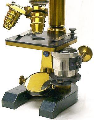 F.W. Schieck Berlin S.W. No. 7982. Continental microscope, c.1884