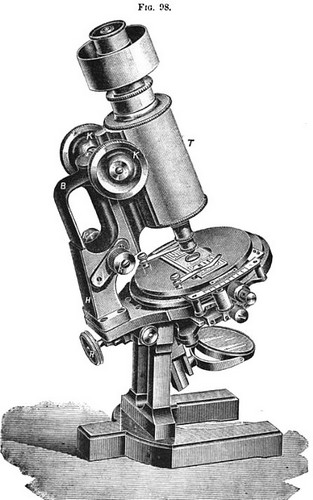 carl zeiss, jena stand 1c for photomicrography and projection. berger's new model with jug handle