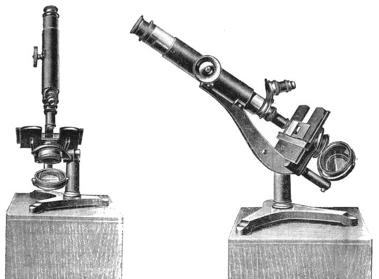 Powell and Lealand Iron Microscope