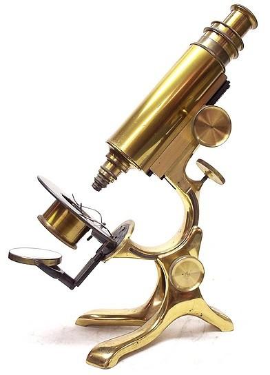 schrauer's wale-limb- model microscope