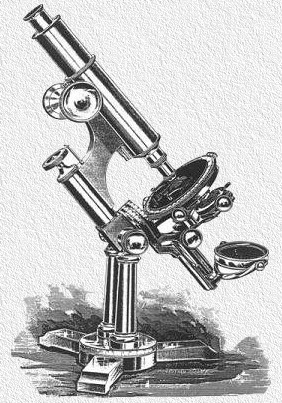The Bausch & Lomb Professional model microscope of 1892